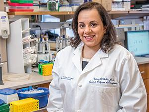 Dr. Nadeen O. Chahine