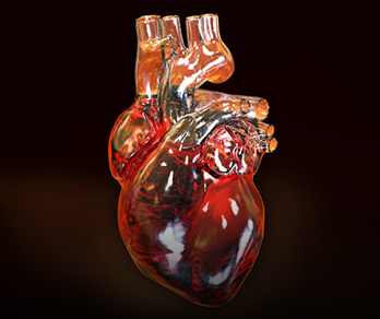 Ventricular Assist Devices as Destination Therapy