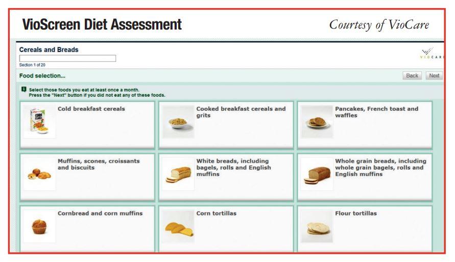 VioScreen Diet Assessment
