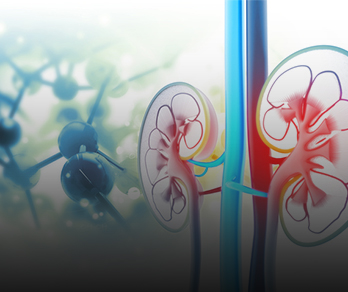 Using Tech to Improve Dietary Adherence in Chronic Kidney Disease