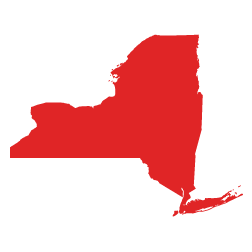 New York State icon