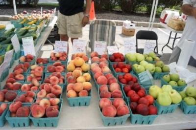 NewYork-Presbyterian/Hudson Valley Hospital Farmer's Market Opens for Season