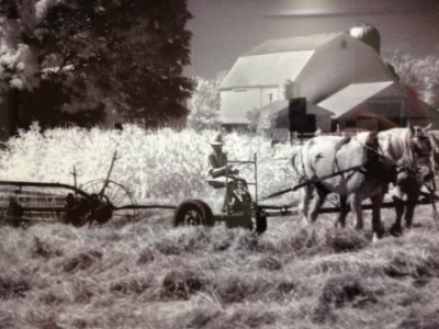 Art of the Harvest exhibit opens at NewYork-Presbyterian/Hudson Valley Hospital