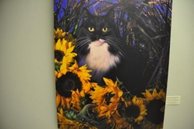 Cats and Dogs exhibit at  NewYork-Presbyterian/Hudson Valley Hospital