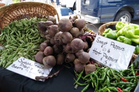 NewYork-Presbyterian/Hudson Valley Hospital Farmers Market to add shuttle services for May opening