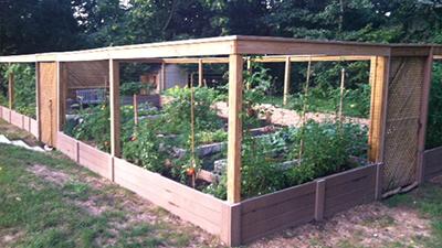 Organic Healing Garden