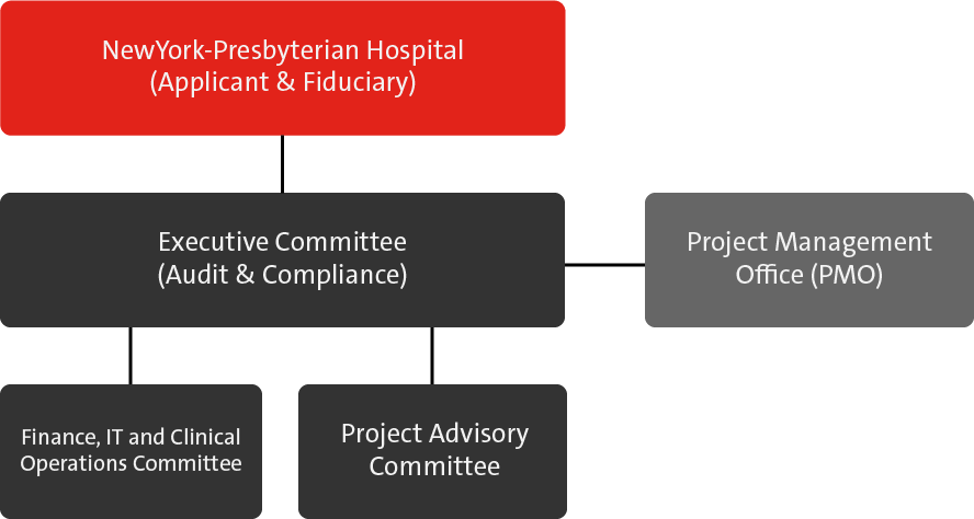 NYP PPS Governance Structure