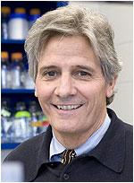 Richard P. Mayeux, M.D., M.Sc.