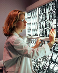 A female doctor examines brain scans at a viewing station