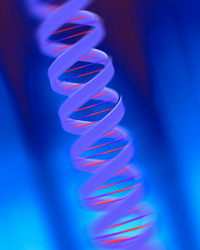 Animation of genetic strand