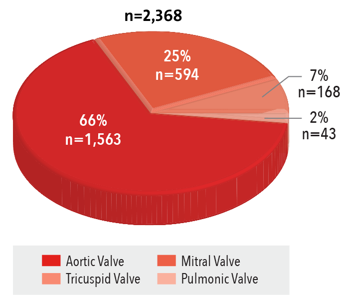 Procedures by Valve Type Pie