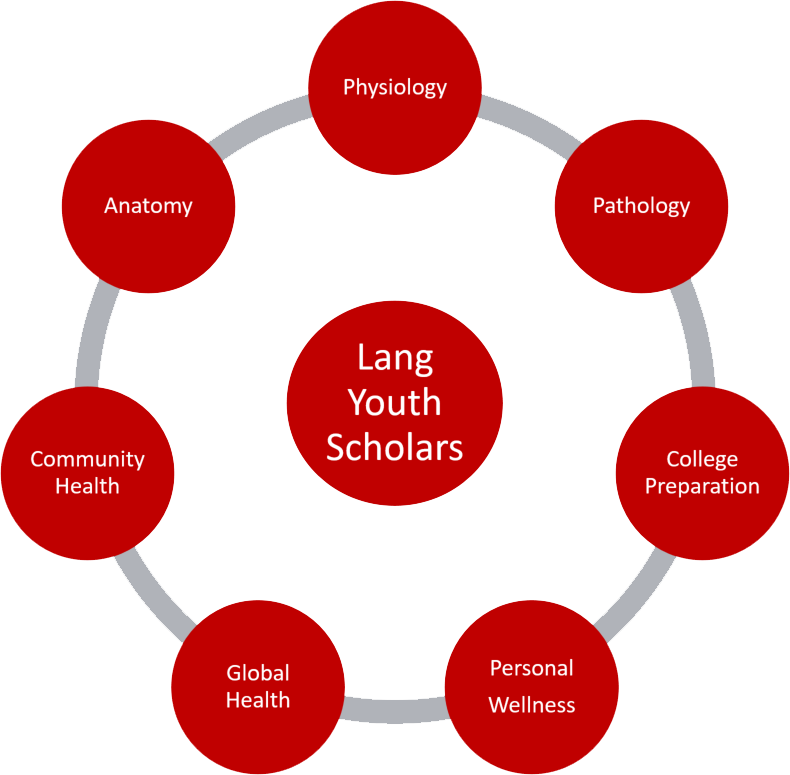 lang-youth-curriculum